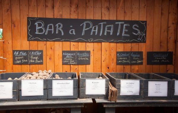 Bar à patates